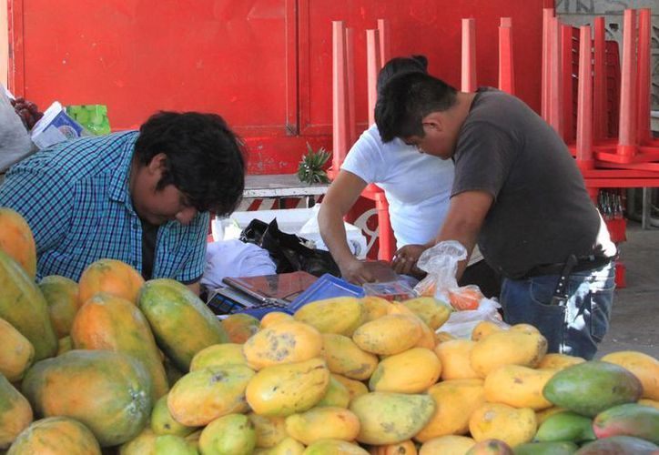 Los mangos atraen la atención de todo extranjero que tiene oportunidad de visitar Yucatán. (Archivo/SIPSE)