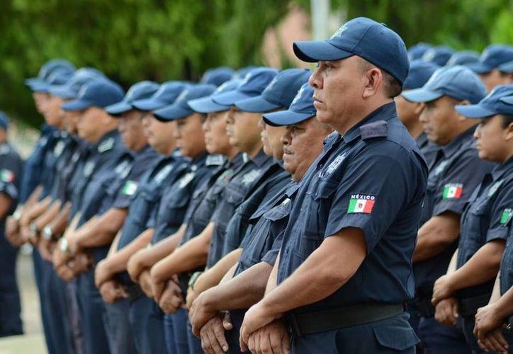 La dirección Seguridad Pública determinó someter a los policías a una serie de entrenamientos, dietas y disciplinas. (Manuel Slazar/SIPSE)