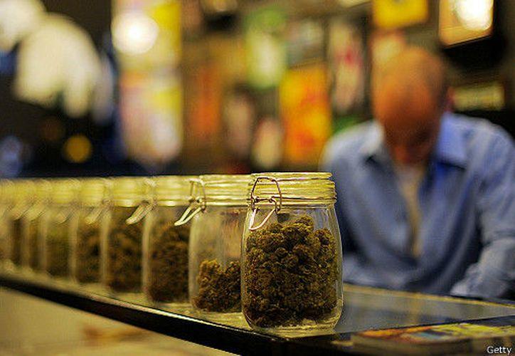 Los legisladores orientales buscan combatir el narcotráfico y generar un mercado competitivo que desaliente la ilegalidad. (The Clinic Online)