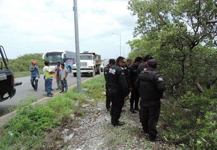 Los restos humanos estaban a unos nueve metros de distancia de la carretera. (Manuel Pool/SIPSE)