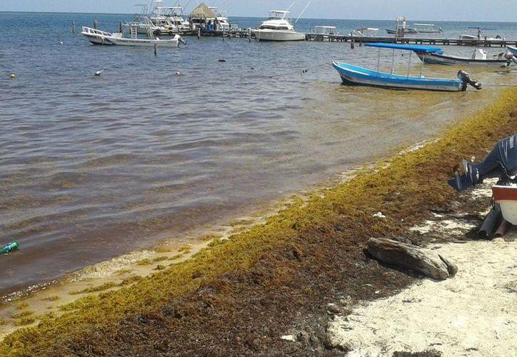 Los prestadores de servicios registran una baja en las actividades acuáticas. (Tomás Álvarez/SIPSE)