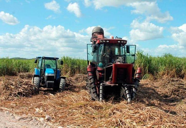 Los productores del campo que usan maquinaria agrícola tendrán acceso a precios más bajos de diésel. La imagen es únicamente ilustrativa. (Milenio Novedades)
