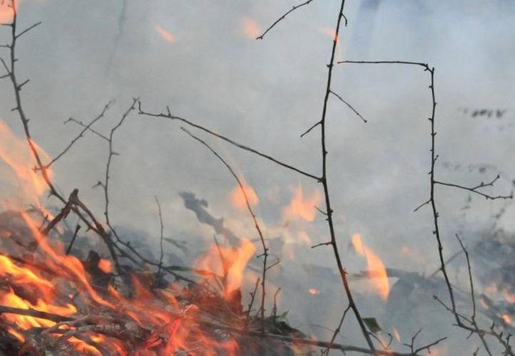 El fuego que él mismo encendió para quemar su terreno y prepararlo para la siempre fue su verdugo: campesino, de 83 años de edad, murió quemado. La imagen es únicamente de contexto. (Archivo/SIPSE)