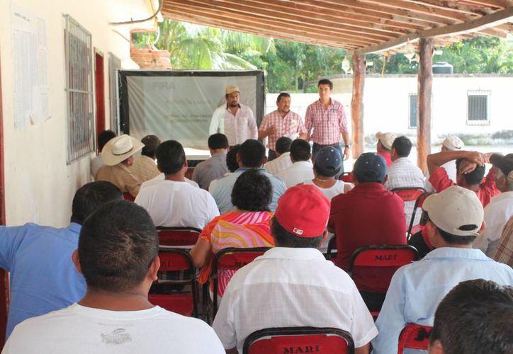 Los productores durante su participación en el taller. (Raúl Balam/SIPSE)