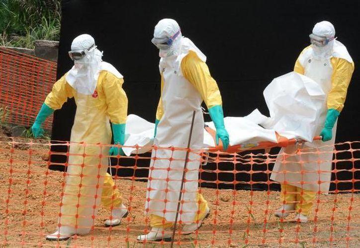 Funcionario de la SSA afirmó que en México existe una reserva de cuatro mil trajes de bioseguridad para proteger personal médico y personas que entren en contacto con los enfermos de ébola. (Archivo/SIPSE)