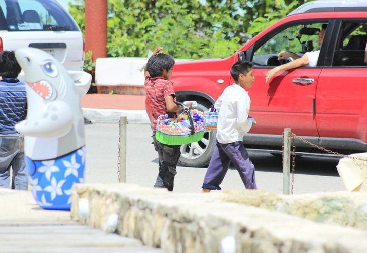 Algunos niños no asisten a la escuela porque ocupan ese tiempo para realizar alguna actividad laboral. (Harold Alcocer/SIPSE)