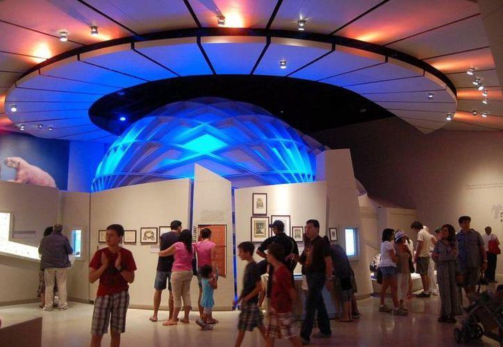 La finalidad de la celebración de los museos es promover el legado y patrimonio de la humanidad. (Milenio Novedades)