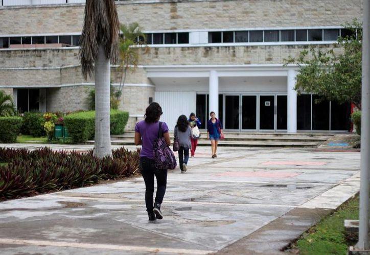 Se proyecta la construcción de una universidad en un predio de hectárea y media. (Edgardo Rodríguez/SIPSE)