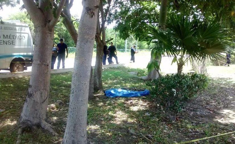 El cuerpo sin vida fue reportado ayer a la una de la tarde. (Redacción/SIPSE)