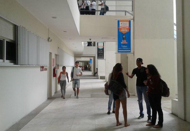 El promedio salarial de sus egresados era de 12 mil pesos mensuales desde su primer empleo. (Teresa Pérez/SIPSE)