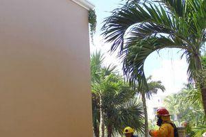 Apagan fuego en la cocina de un hotel de Cancún: simulacro