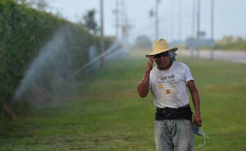 Con ingenio, un trabajador desafió las altas temperaturas que se registraron ayer en Mérida. (Luis pérez/SIPSE)