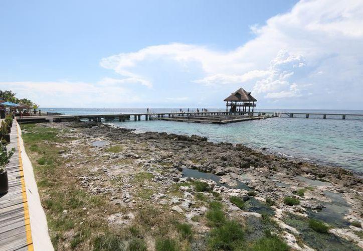 La instalación de 250 bases para corales, avanza de manera exitosa en el parque natural. (Foto: Redacción)