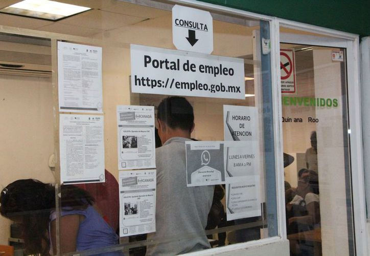 Personas mayores de 50 años se han presentado al Servicio Municipal del Empleo. (Paola Chiomante/SIPSE)