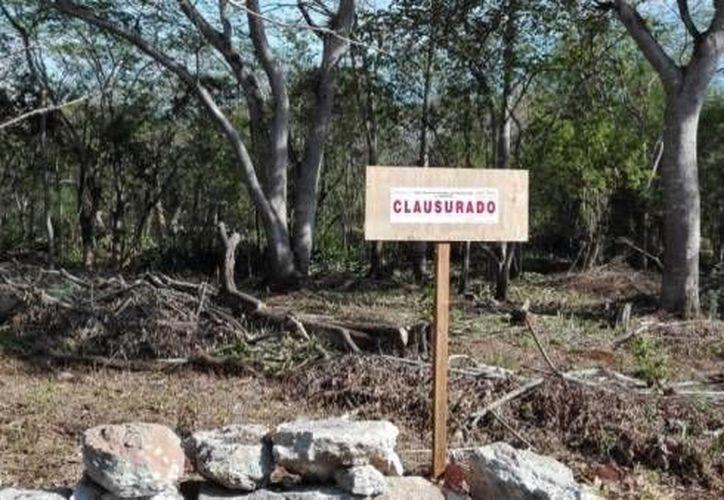 Agentes de la Profepa clausuraron este jueves de manera total temporal un predio ubicado en la Hacienda Oxtapacab, del municipio de Tecoh, Yucatán.  (Foto cortesía de Profepa)