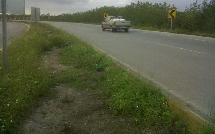 En este tramo de la carretera cerca de Ticopó es donde ven la aparición fantasmal. (Jorge Moreno/SIPSE)