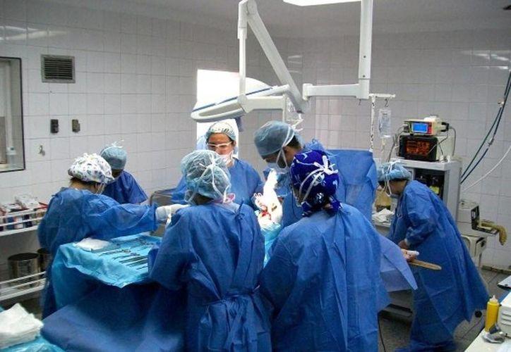 Especialistas como trasplantólogos y nefrólogos impartirán pláticas y talleres a estudiantes de la Facultad de Medicina. (Archivo SIPSE)