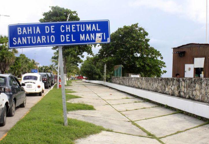 El 24 de octubre de 1996 se declaró como Área Natural Protegida la región conocida como Bahía de Chetumal. (Harold Alcocer/SIPSE)