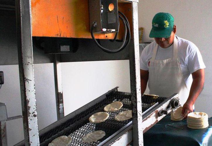 El incremento en el precio de las tortillas desde 2014 a la fecha ha sido de un peso. (Daniel Pacheco/SIPSE)
