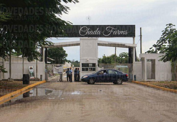 Las instalaciones de Hidroponia Maya fueron adquiridas en 2004.  (Redacción/SIPSE)