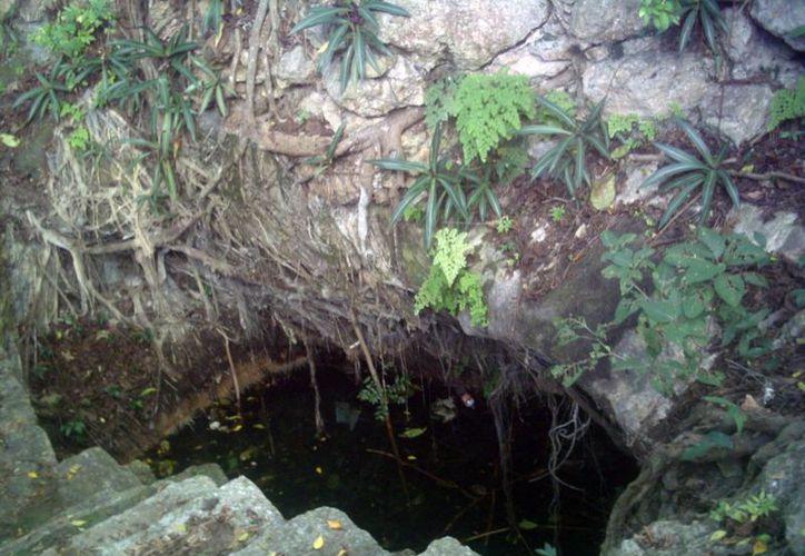 De todos los cenotes que hay en Mérida sólo se tienen datos de 33. (SIPSE)