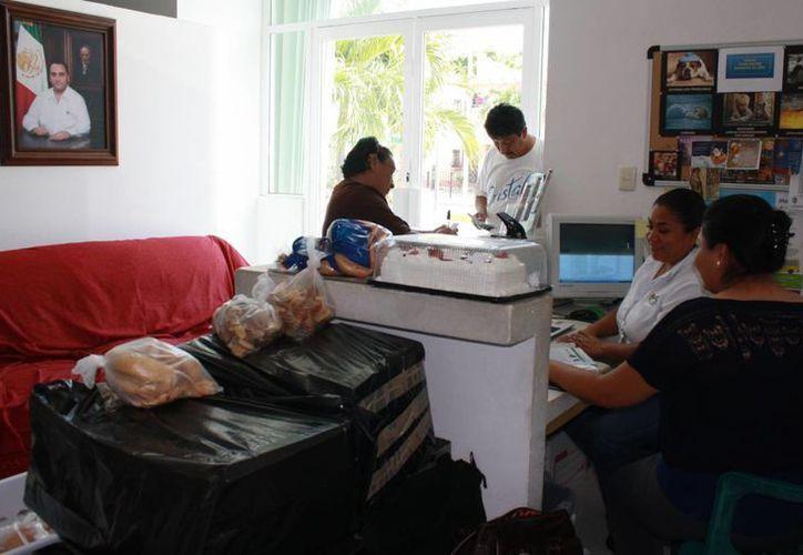 Los que más piden apoyo son originarios de Yucatan, Tabasco y Chiapas. (Alida Martínez/SIPSE)