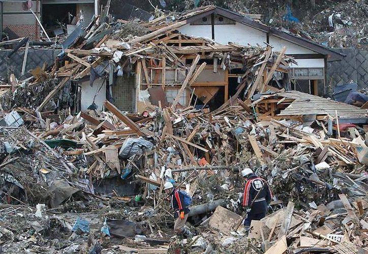 El sismo de 9 grados y su consecuente tsunami, ocurrido el 11 de marzo de 2011 en Japón, se saldó con unos 20 mil muertos. (Archivo/Agencias)