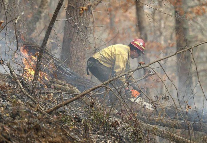 Las autoridades chilenas registraron solo cuatro incendios forestales en todo 2015, comparados con los 85 que van en 2016. (AP/John Bazemore)