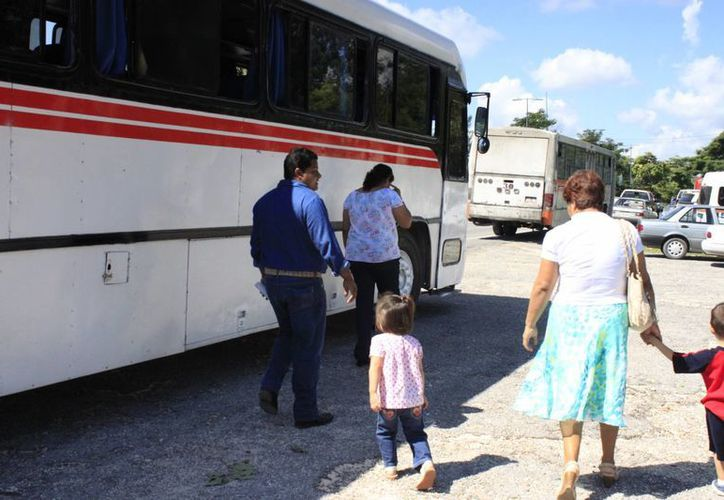 Integrantes de la Untrac dicen que el trato al servicio del transporte no es igualitario por parte de autoridades que dan permisos. (Harold Alcocer/SIPSE)