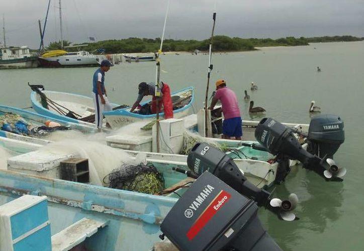 La sustitución de motores propiciará un mejor panorama económico para los pescadores de la entidad. (Redacción/SIPSE)