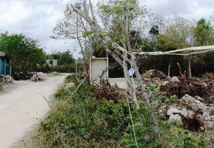 Alrededor de 300 personas que habitan en la zona sufren este problema. (Rossy López/SIPSE)