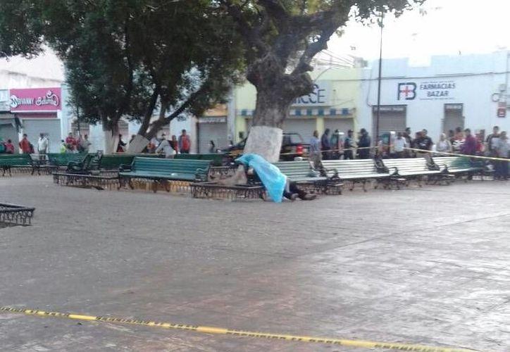 Tras el crimen cometido el 18 de febrero en el Parque Eulogio Rosado del centro de Mérida, este viernes fue detenido el asesino. (SIPSE)