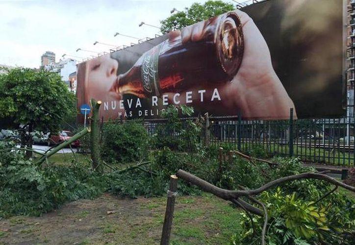 Las autoridades de Buenos Aires piden que Coca-Cola replante un total de 60 árboles.(twitter.com/vascoverde)