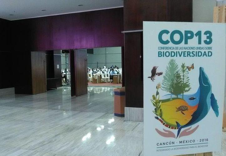 Se dio a conocer que Cancún será sede del Centro Internacional de Investigación de Cambio Climático y Ambiental del Caribe. (Redacción/SIPSE)