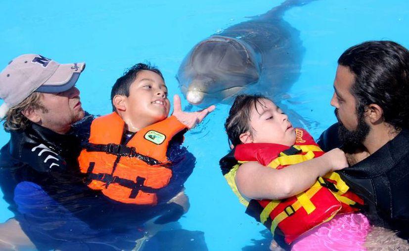 Delfines influyen en la percepción sensorial de los pequeños. (Milenio Novedades)