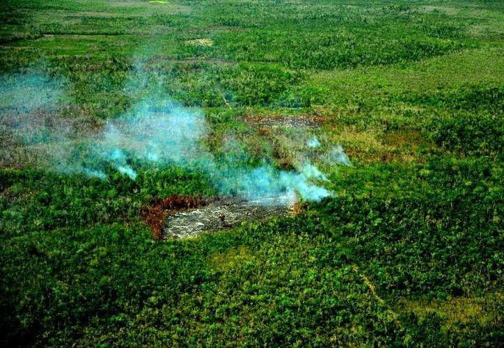 Advierten que sólo se podrá hace uso del fuego cuando no existan incendios forestales en un radio de 10 kilómetros. (Redacción/SIPSE)