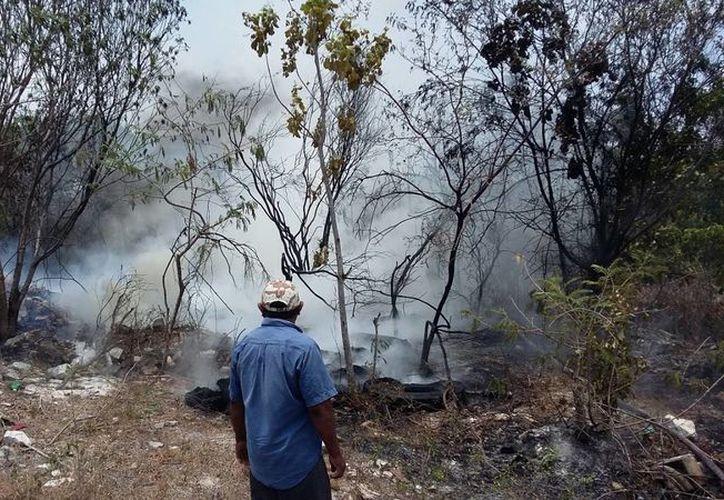 Los habitantes de las zonas cercanas a los incendios se organizan para ayudar a sofocar el fuego. (Daniel Pacheco/SIPSE)