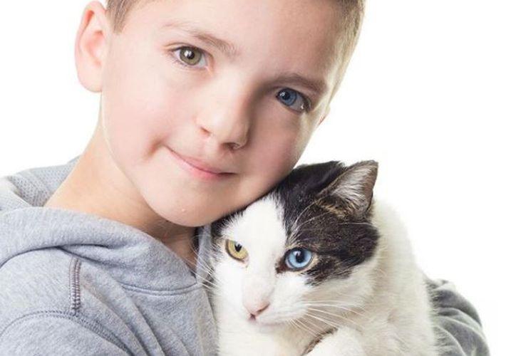 El gato rescatado y  Madden padecen de las mismas alteraciones genéticas. (Foto: Instagram)