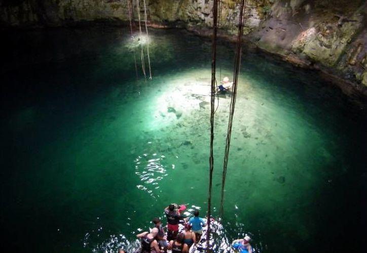 En el marco de la designación de Mérida como 'Capital Americana de la Cultura 2017', ha comenzado una campaña en busca de los '7 Tesoros del Patrimonio Cultural de Mérida', en la cual hasta ahora hay tres candidatos, entre ellos los cenotes de la ciudad. (Milenio Novedades)