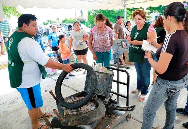Numerosos vecinos participaron en el programa Recicla por tu bienestar en la colonia Xoclán Bech y los fraccionamientos Chenkú, Chuburná y Juan Pablo II. (Milenio Novedades)
