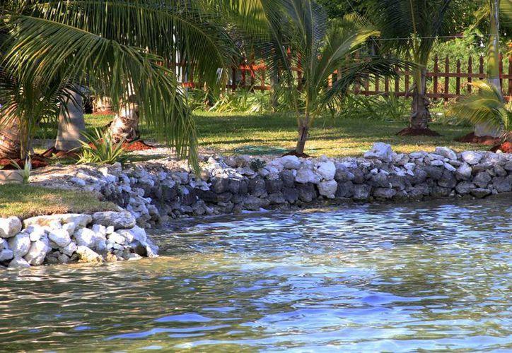 La Profepa detectó el reforzamiento de un muro de contención paralelo a la laguna construido con piedra. (Harold Alcocer/SIPSE)