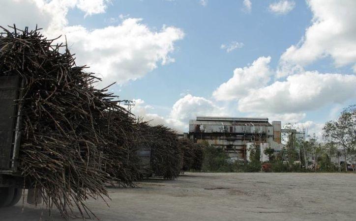 La caldera tendrá una capacidad para consumir cerca de 15 mil toneladas de caña diarias. (Edgardo Rodríguez/SIPSE)