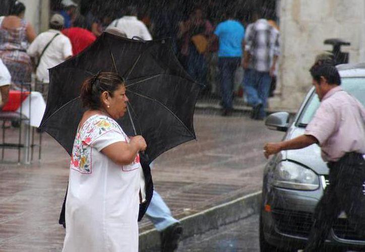 A pesar de la lluvia, las temperaturas continuarán siendo frescas a templadas al amanecer. (SIPSE)
