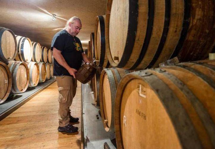 La cervecera belga Cantillon Gueuze ha tenido problemas con la producción de cerveza ya que por las altas temperaturas resulta imposible destilar el licor sin refrigeración artificial. (AP)