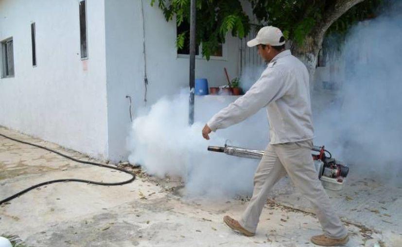 El equipo de fumigación recorrerá, a partir de mañana, algunas zonas de la ciudad para mitigar la aparición del mosco transmisor del dengue. (Archivo/SIPSE)