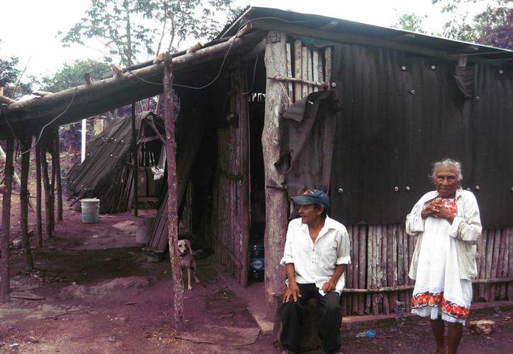 La población de adultos mayores de Bacalar será en 2016 de dos mil 415.  (Javier Ortiz/SIPSE)