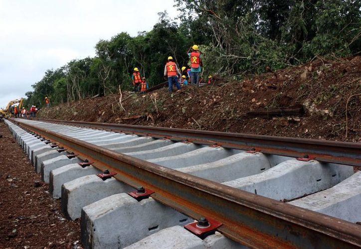 Trabajos para hacer realidad la ruta del Sureste. (José Acosta/SIPSE)
