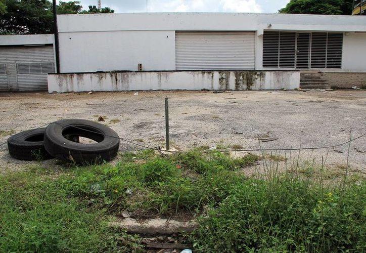 Advierten empresarios que los parques industriales tienen espacios que pueden ser aprovechados. (SIPSE)