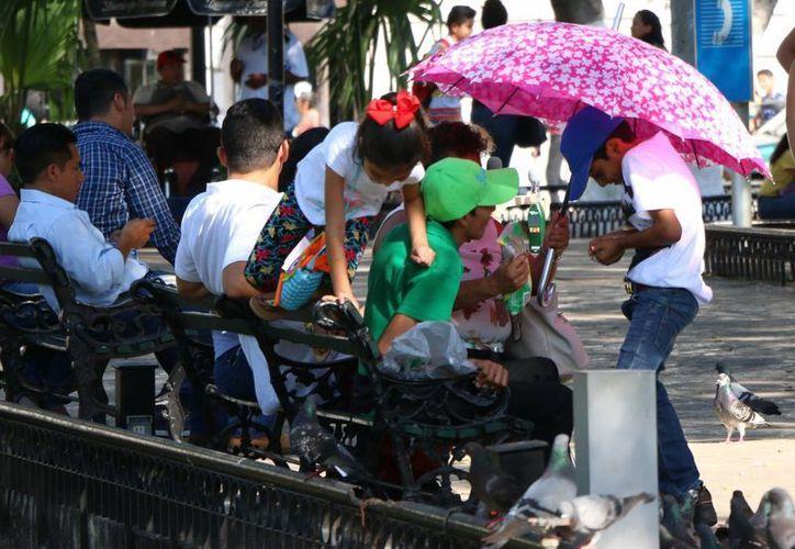 Mientras que este jueves la temperatura máxima fue de 40 grados en Yucatán, la Conagua espera que este viernes se supere esa marca. (José Acosta/Milenio Novedades)