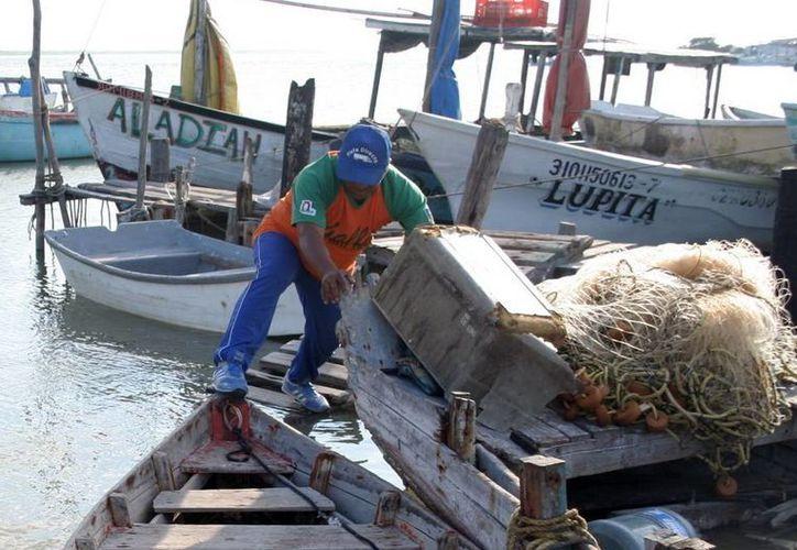 """Con el programa """"Peso por peso"""" los pescadores adquieren insumos para realizar su labor. (Milenio Novedades)"""